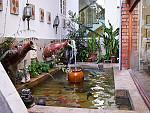 Fish Pond/Garden